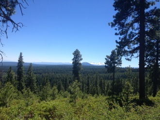 VIew from Green ridge
